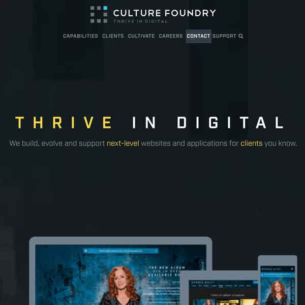 Culture Foundry Homepage Screen Shot